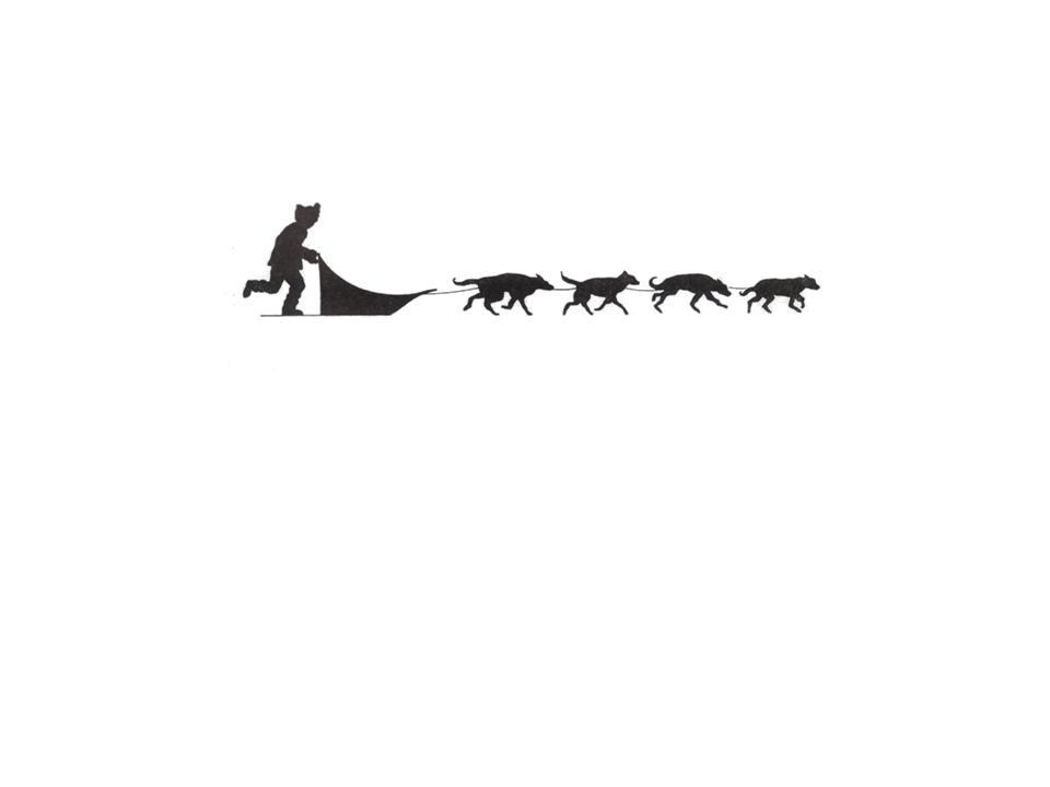 sled dog team 2018 iditarod teacher on the trail� heidi