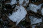 "closeup of ""styrofoam snow"""