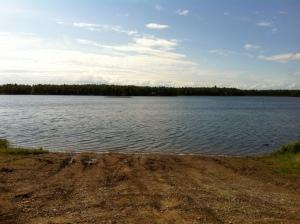 Willow Lake in June
