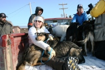 Volunteers with dropped dogs