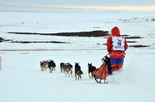 Cindy heading down Cape Nome