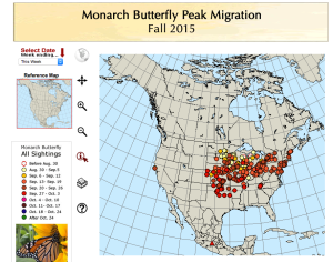The migration map of the monarch