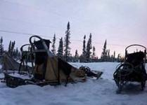 photos-sled-sunset-th